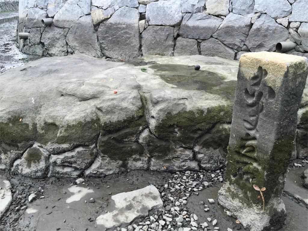 f:id:awa-otoko:20160627193306j:image