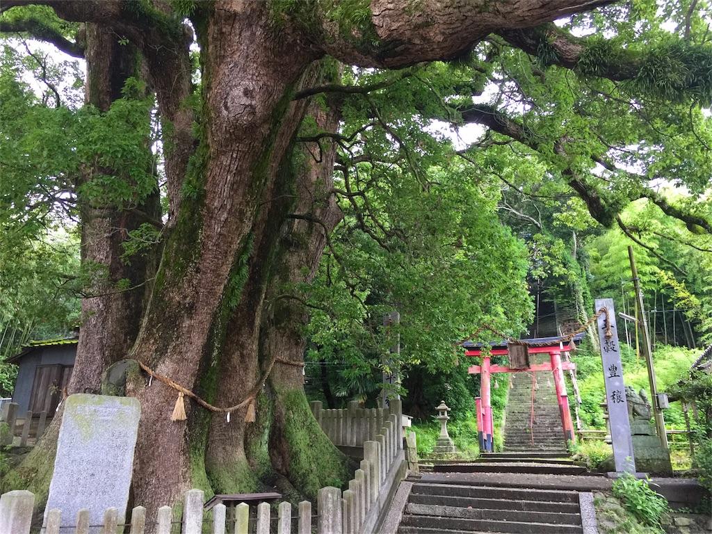 f:id:awa-otoko:20160706200903j:image