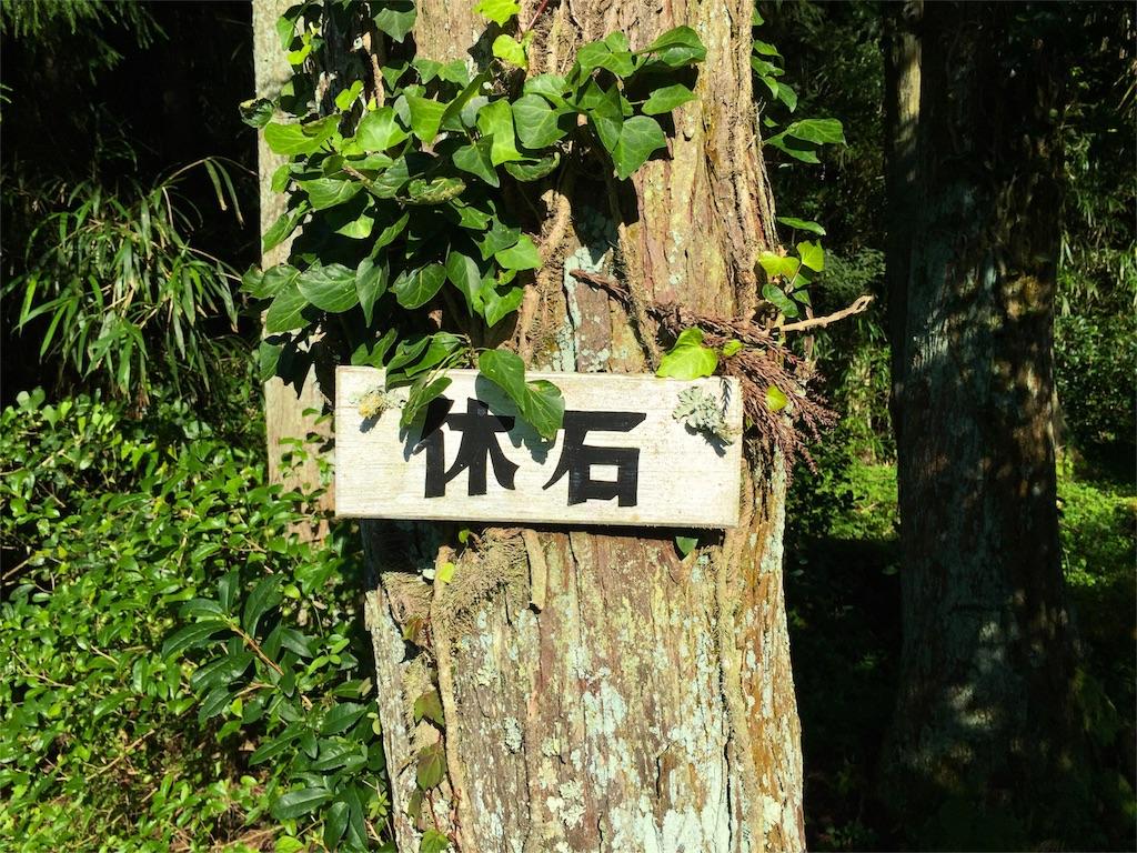 f:id:awa-otoko:20160719203346j:image