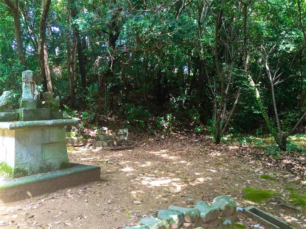 f:id:awa-otoko:20160827232427j:image