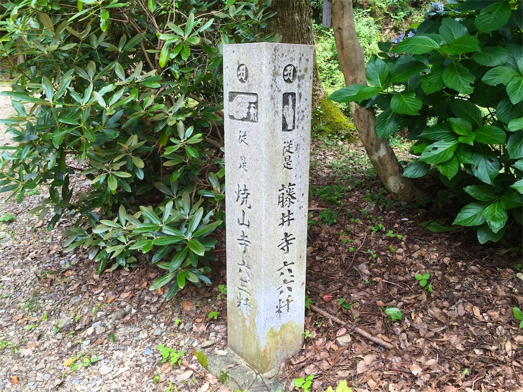f:id:awa-otoko:20160903001047j:image