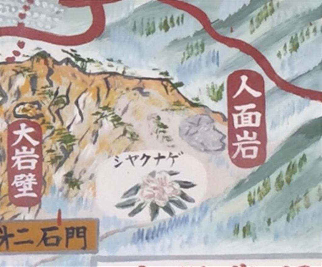 f:id:awa-otoko:20161112203149j:image