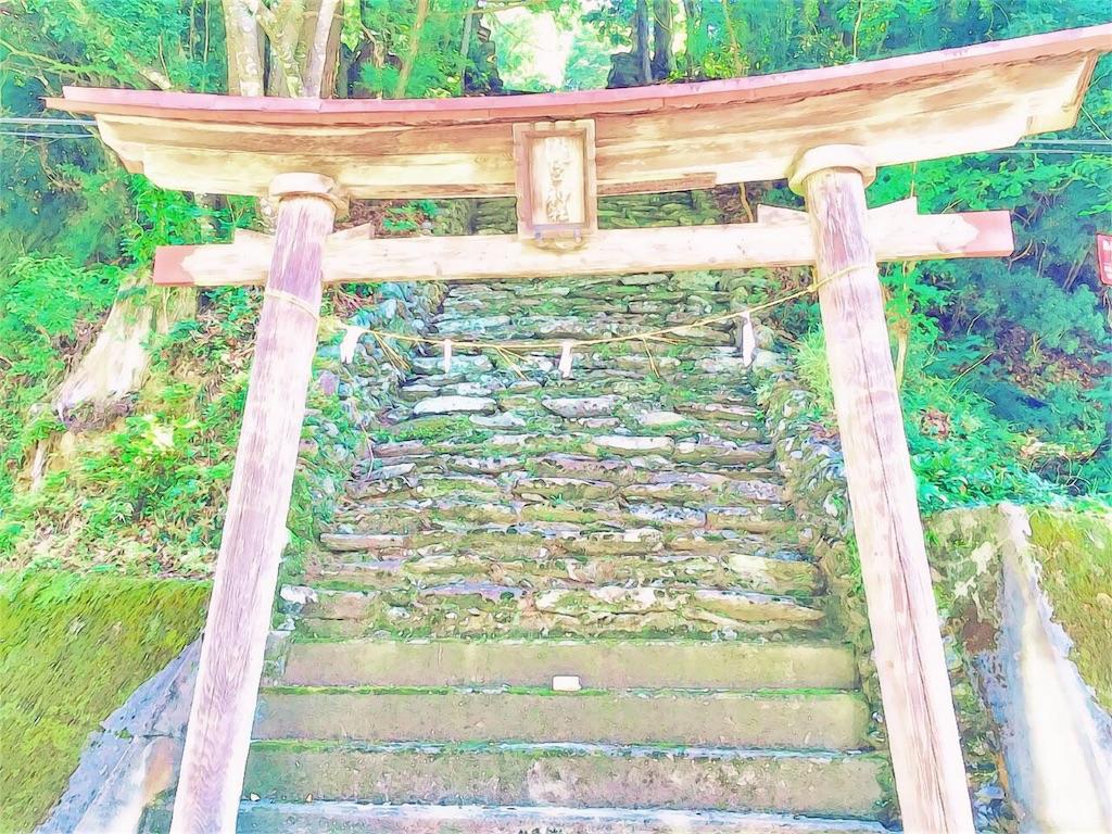 f:id:awa-otoko:20161214210038j:image