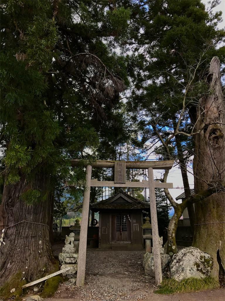 f:id:awa-otoko:20161231145152j:image