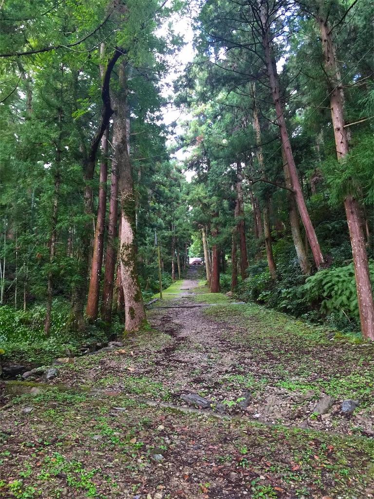f:id:awa-otoko:20161231173026j:image