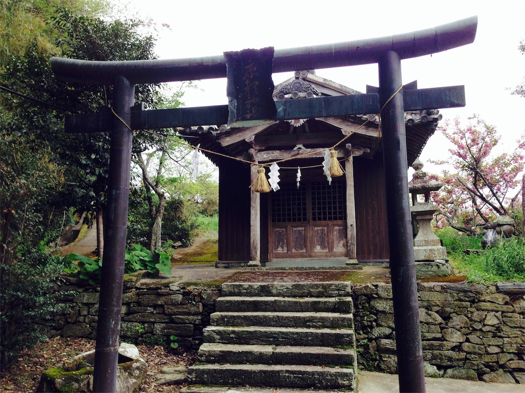 f:id:awa-otoko:20170105233707j:image