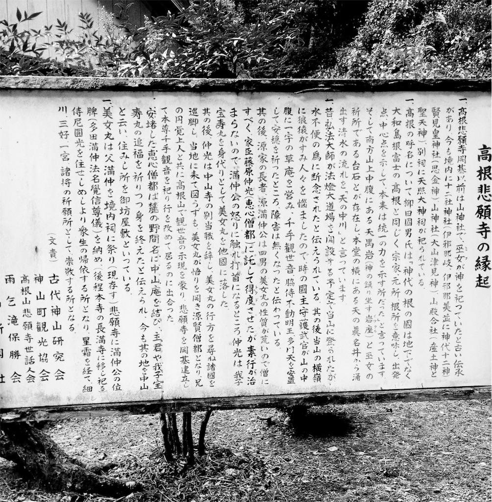 f:id:awa-otoko:20170109232355j:image
