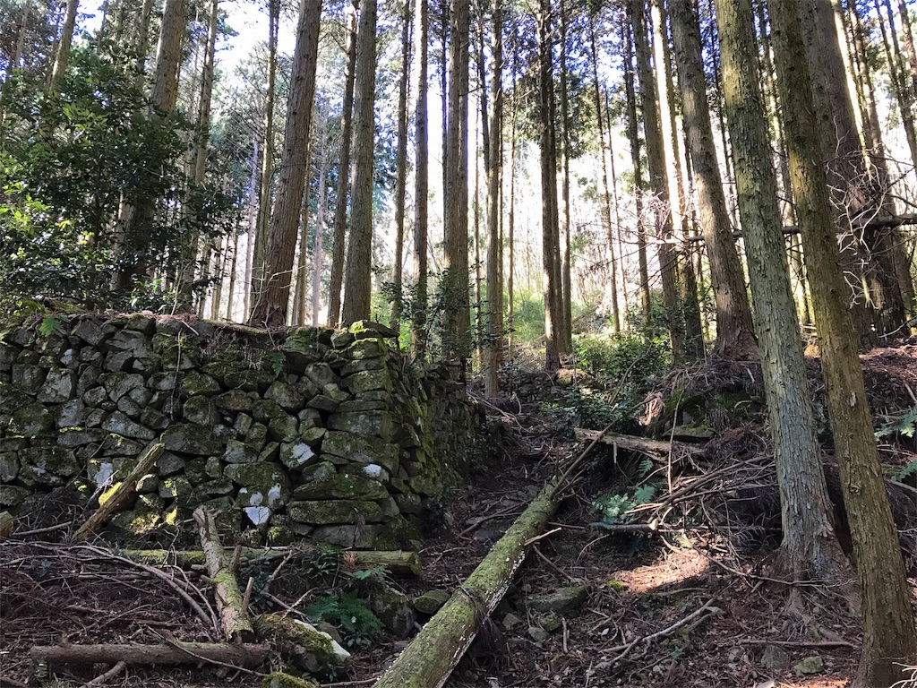 f:id:awa-otoko:20170204152816j:image