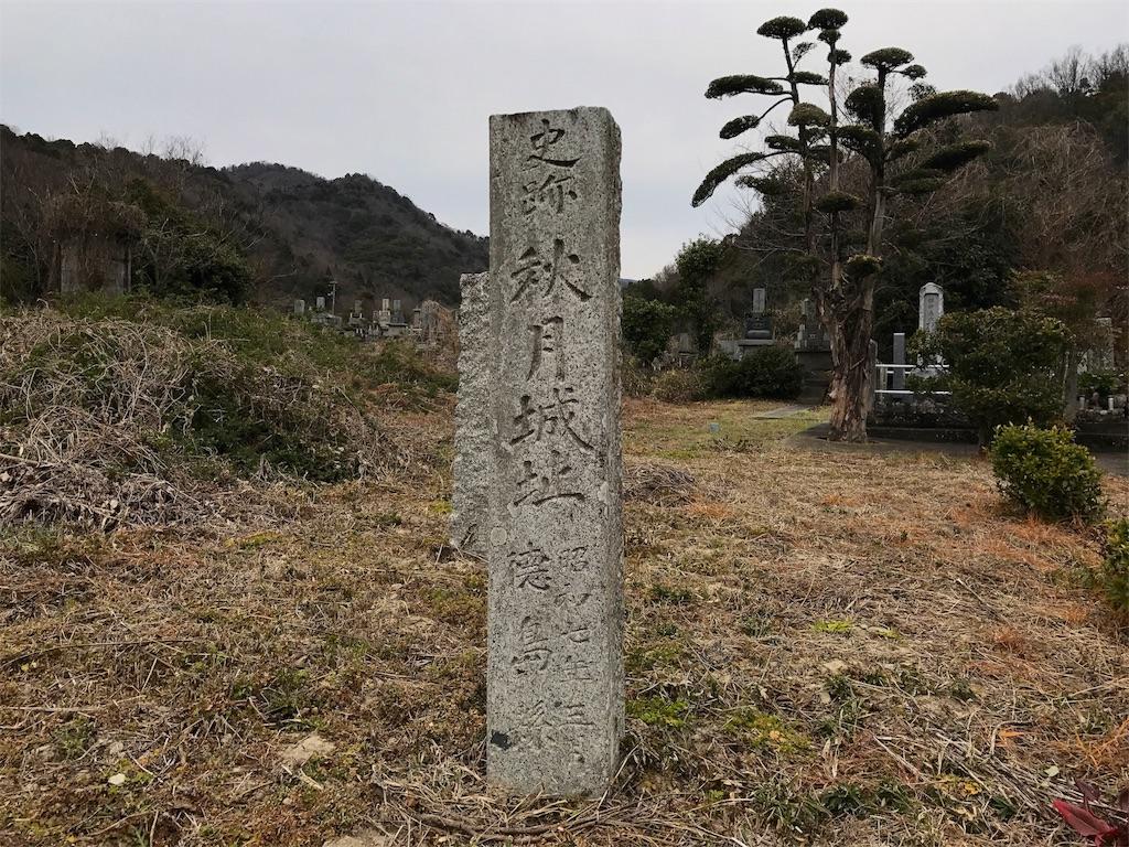 f:id:awa-otoko:20170318202233j:image