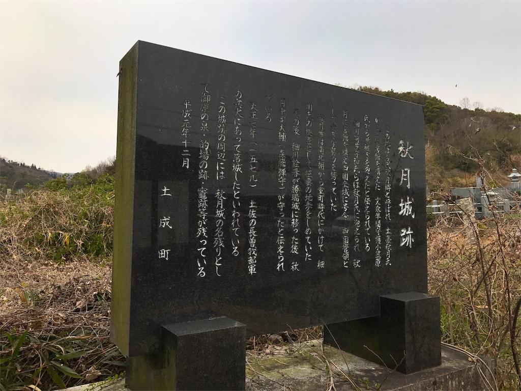 f:id:awa-otoko:20170318202538j:image