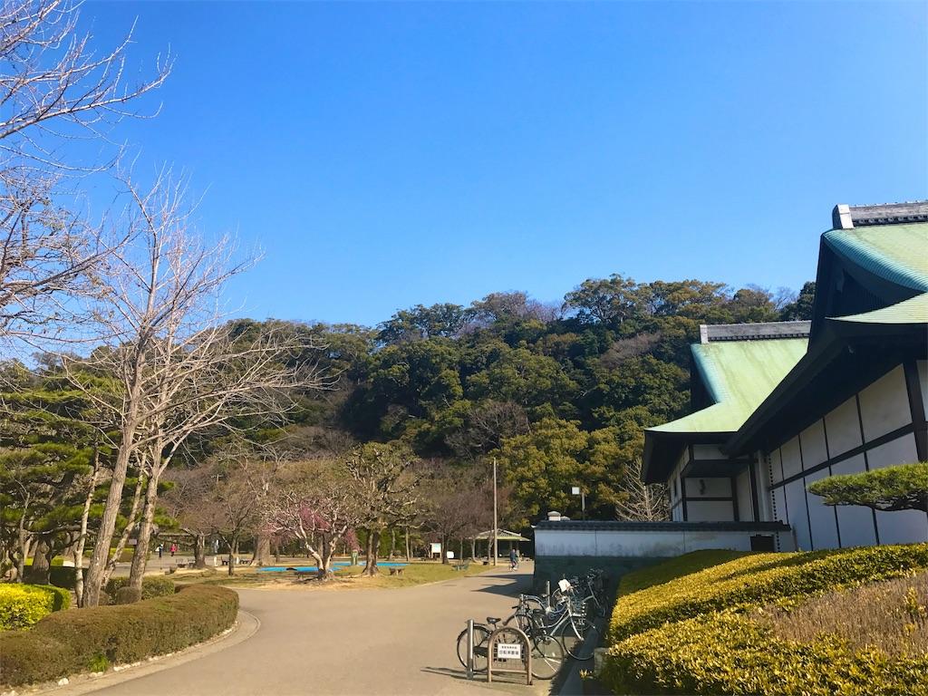 f:id:awa-otoko:20170402180318j:image