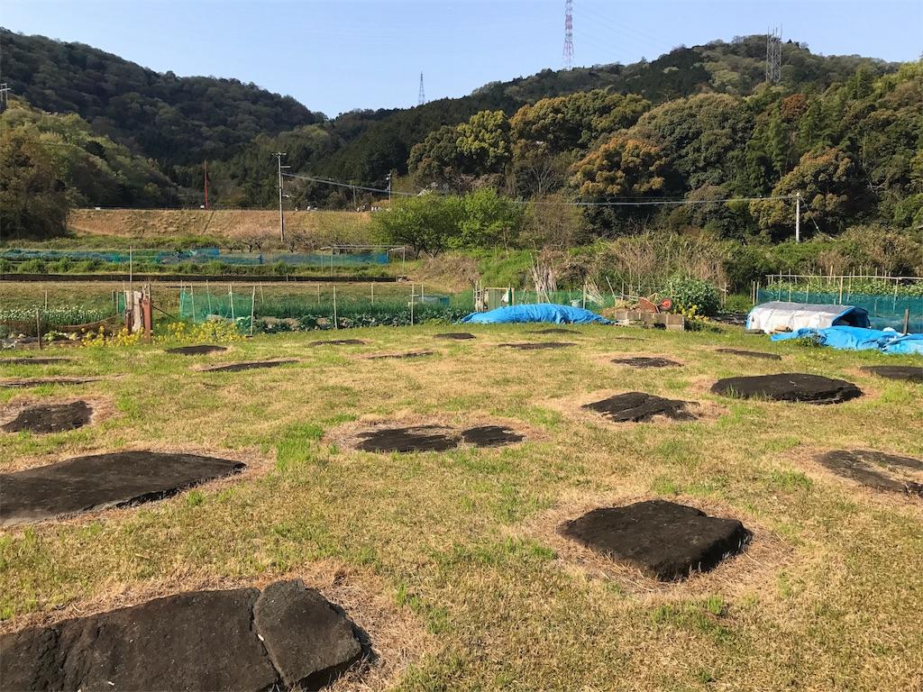 f:id:awa-otoko:20170415182525j:image