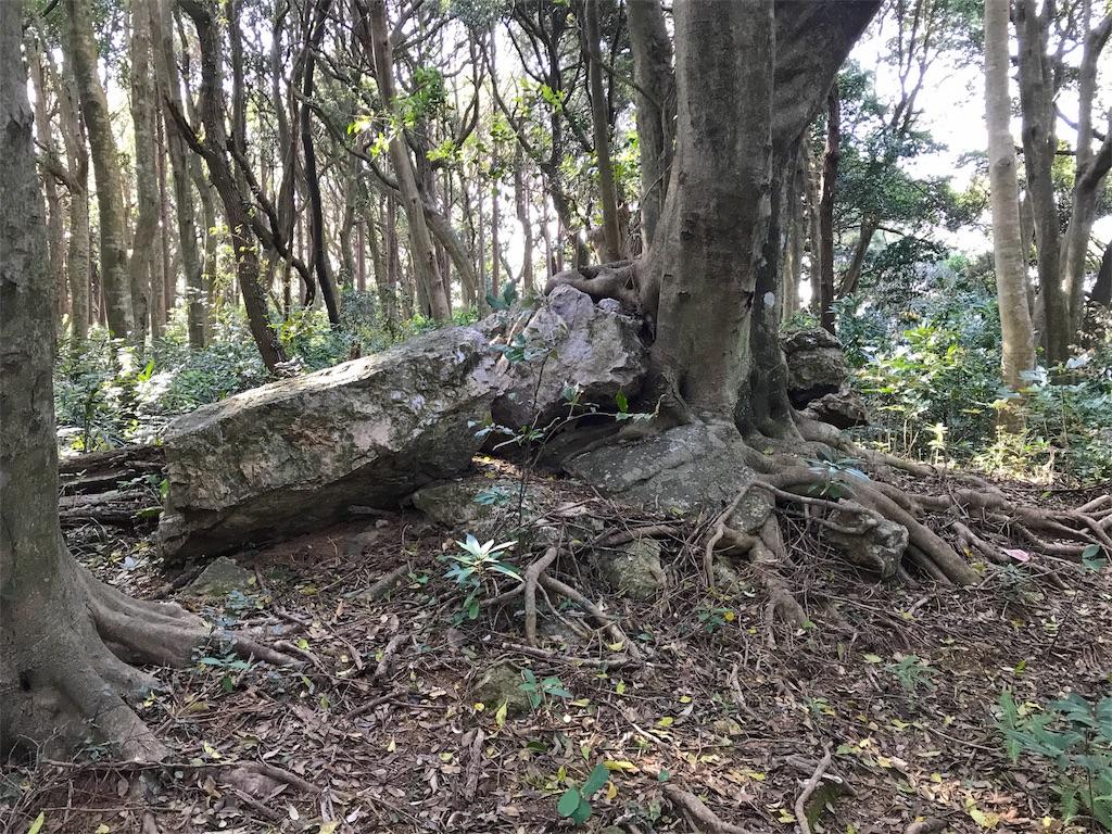 f:id:awa-otoko:20170422205050j:image