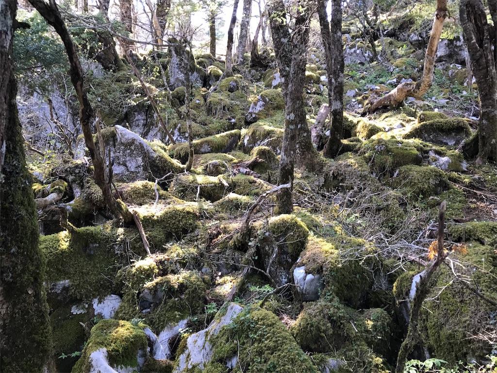 f:id:awa-otoko:20170531000212j:image