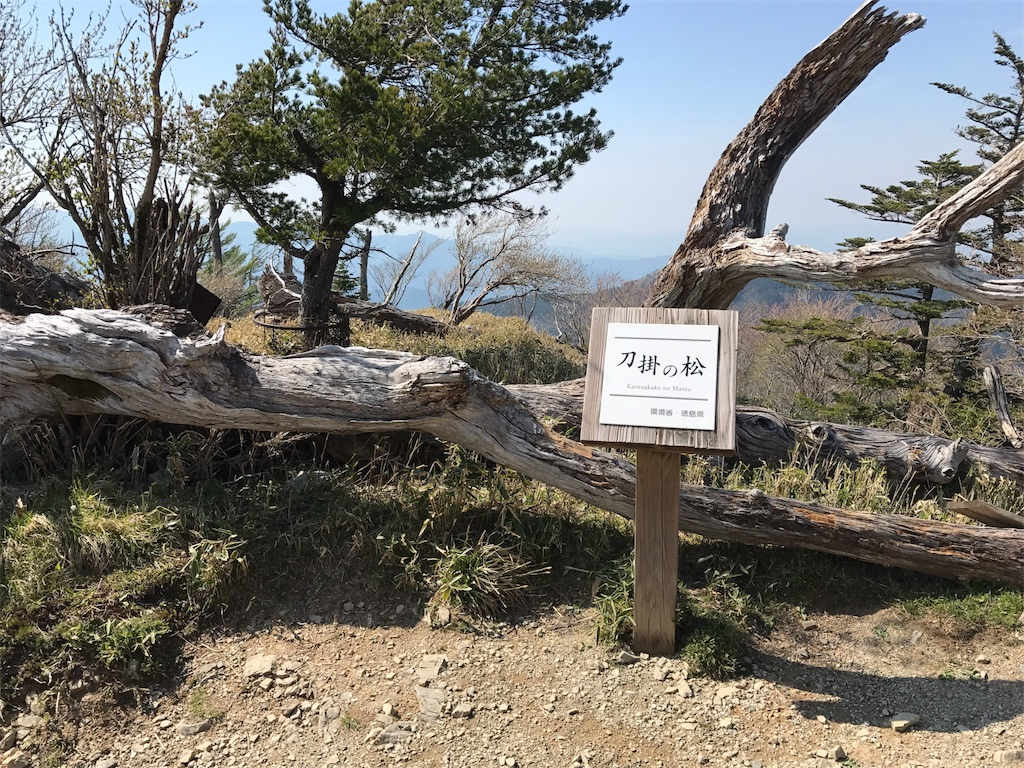 f:id:awa-otoko:20170531000409j:image