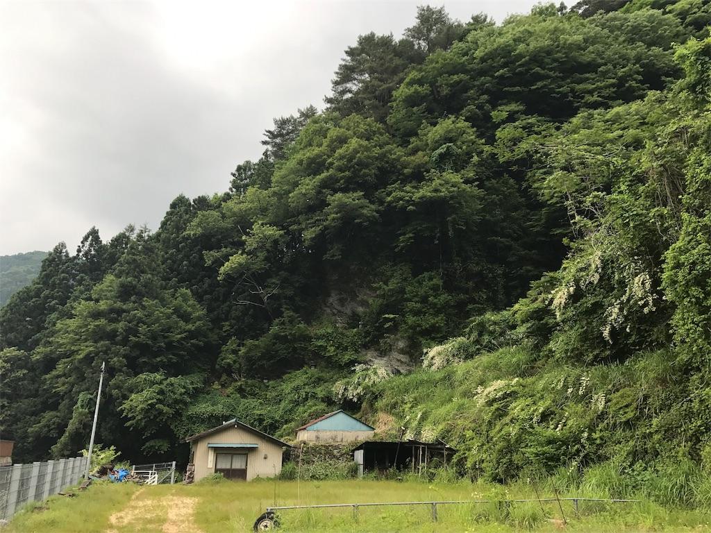 f:id:awa-otoko:20170619232327j:image