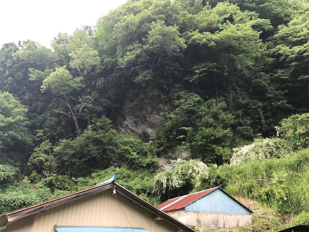 f:id:awa-otoko:20170619232519j:image