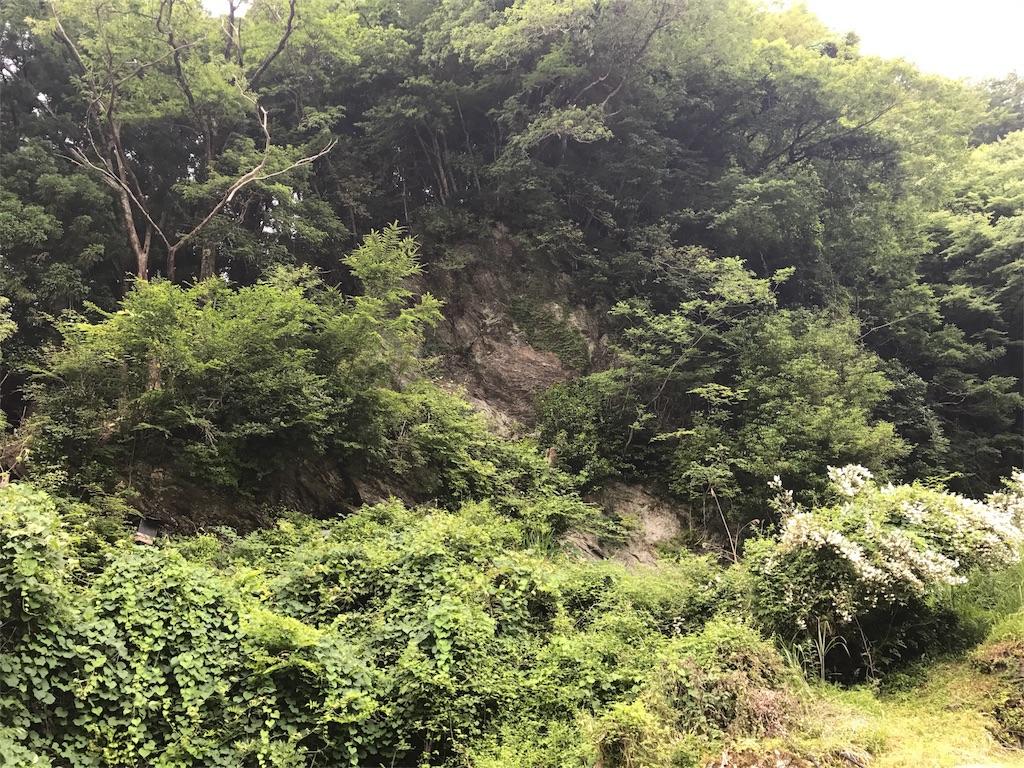 f:id:awa-otoko:20170619232736j:image