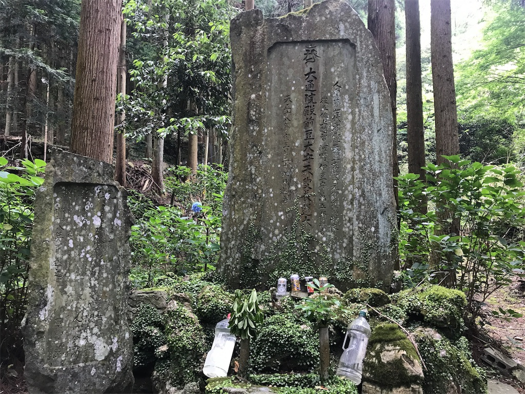 f:id:awa-otoko:20170624175055j:image