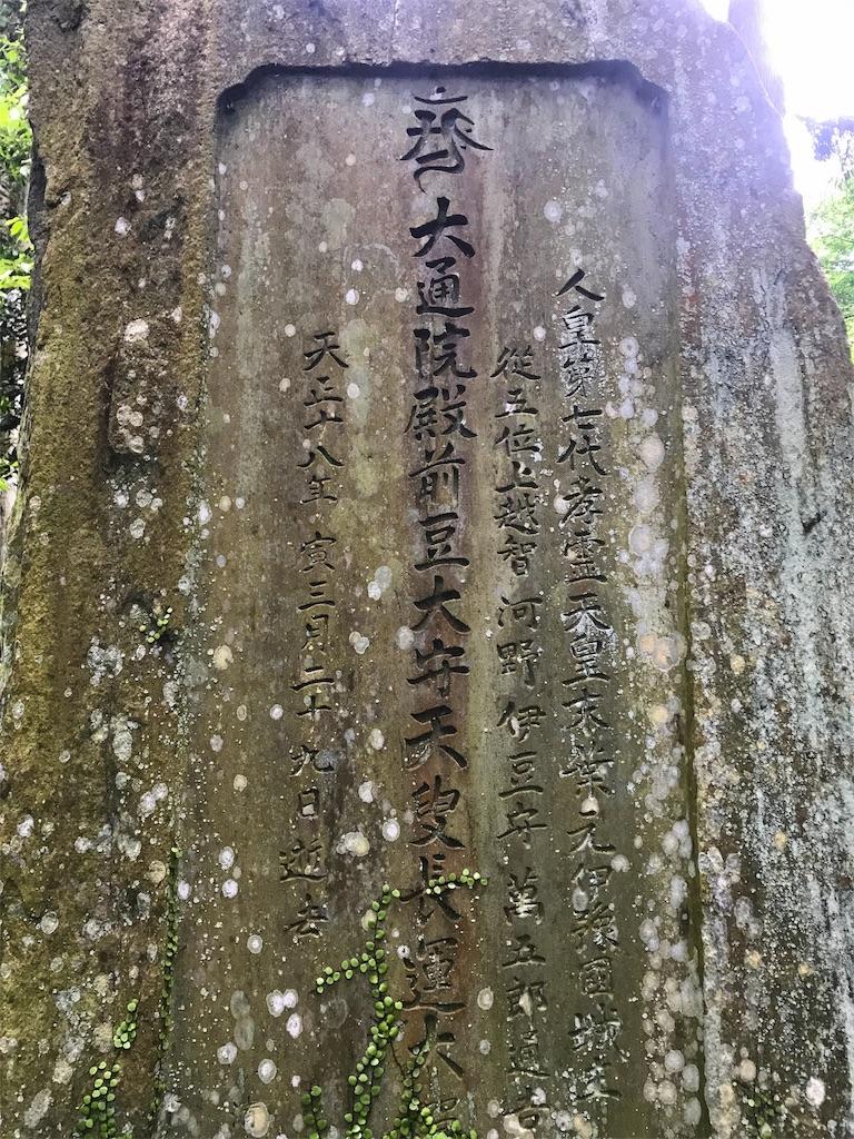 f:id:awa-otoko:20170624175147j:image