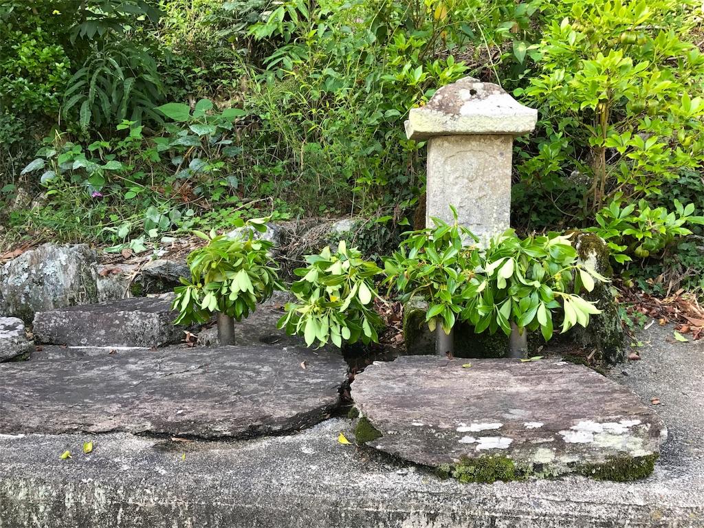 f:id:awa-otoko:20170701211032j:image