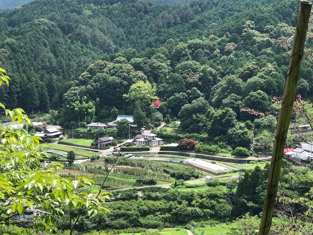 f:id:awa-otoko:20170709230127j:image