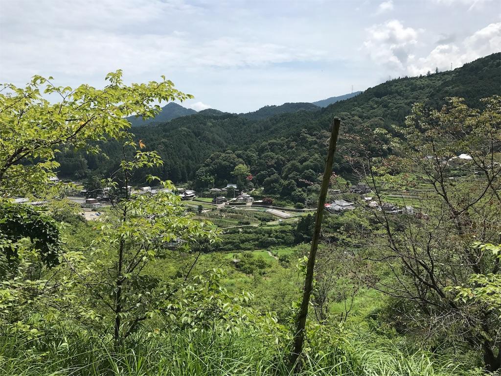 f:id:awa-otoko:20170709231049j:image