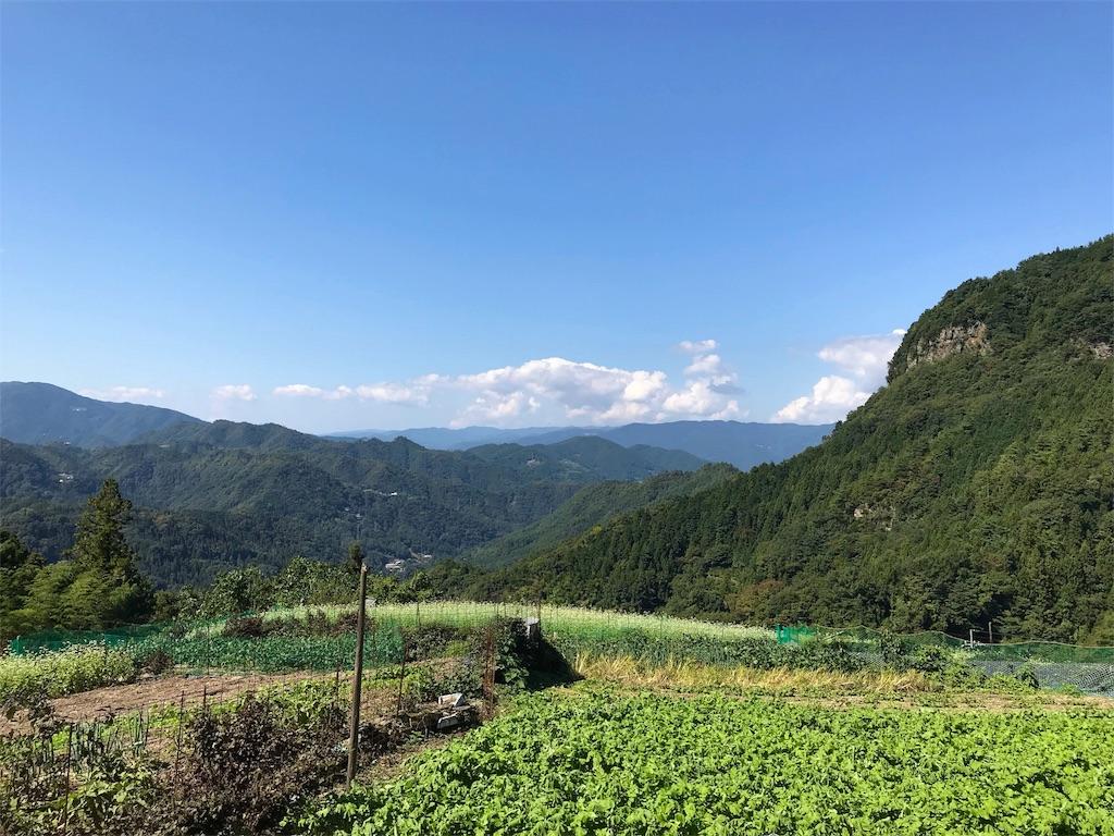 f:id:awa-otoko:20171020083848j:image