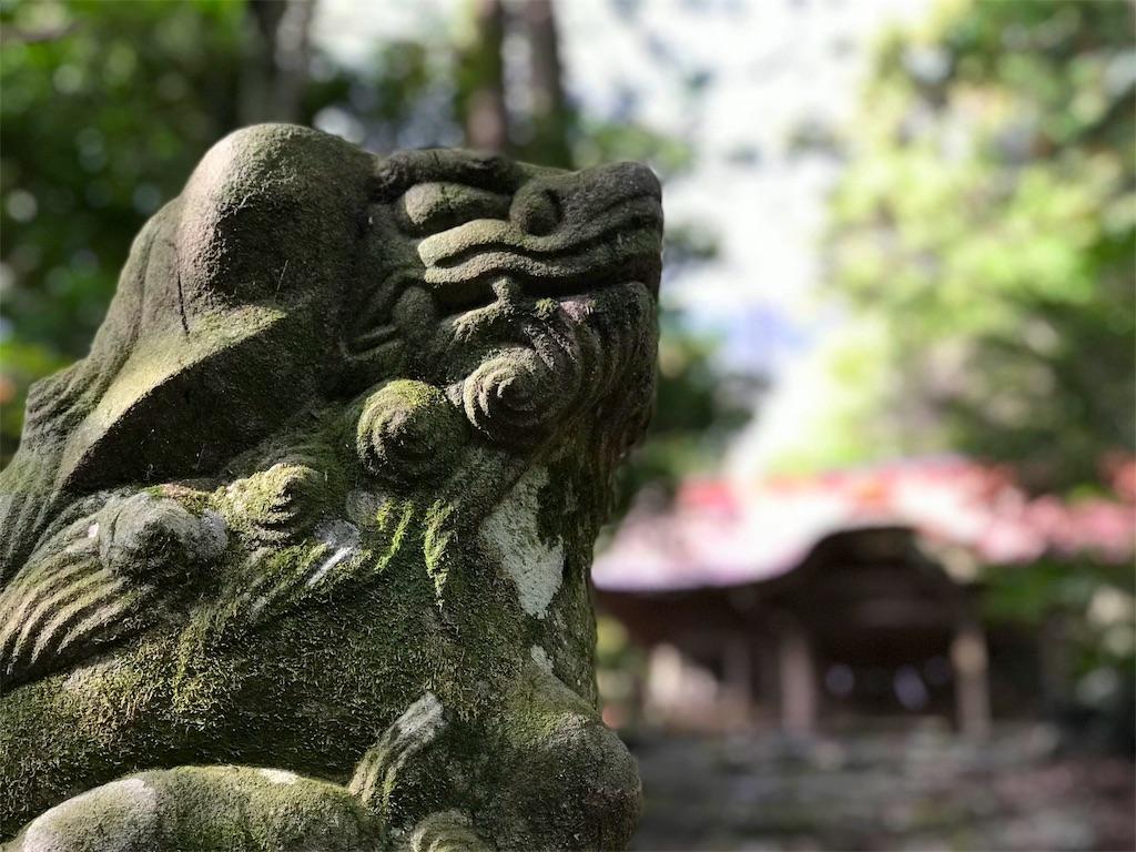 f:id:awa-otoko:20171226001325j:image
