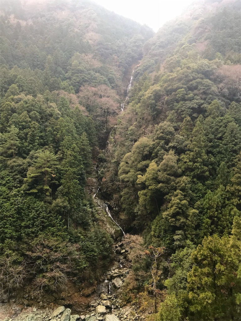 f:id:awa-otoko:20180121001321j:image