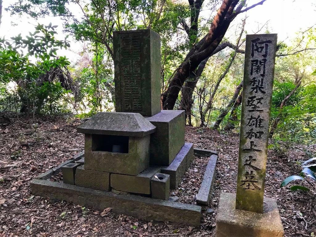 f:id:awa-otoko:20180225100701j:image