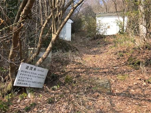 f:id:awa-otoko:20181224005209j:image