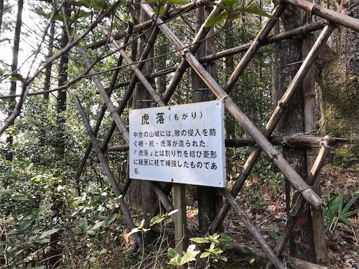 f:id:awa-otoko:20181224005218j:image