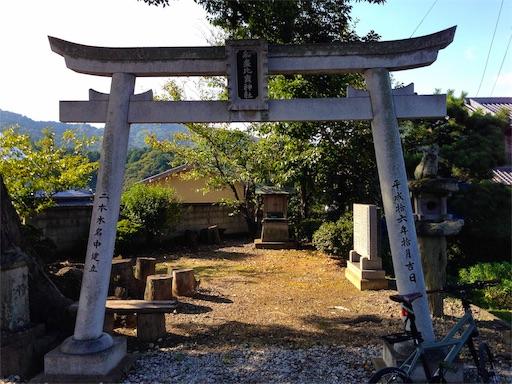 f:id:awa-otoko:20190224205356j:image
