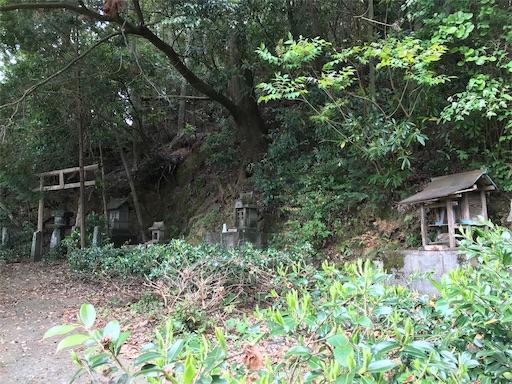 f:id:awa-otoko:20200123225008j:image