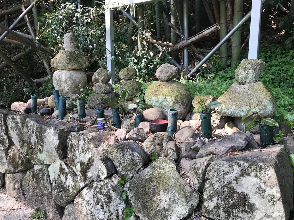 f:id:awa-otoko:20200405222018j:image