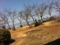 [photo] 20110328 日向山頂