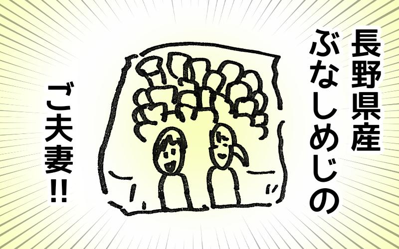 f:id:awawako:20180225131433p:plain