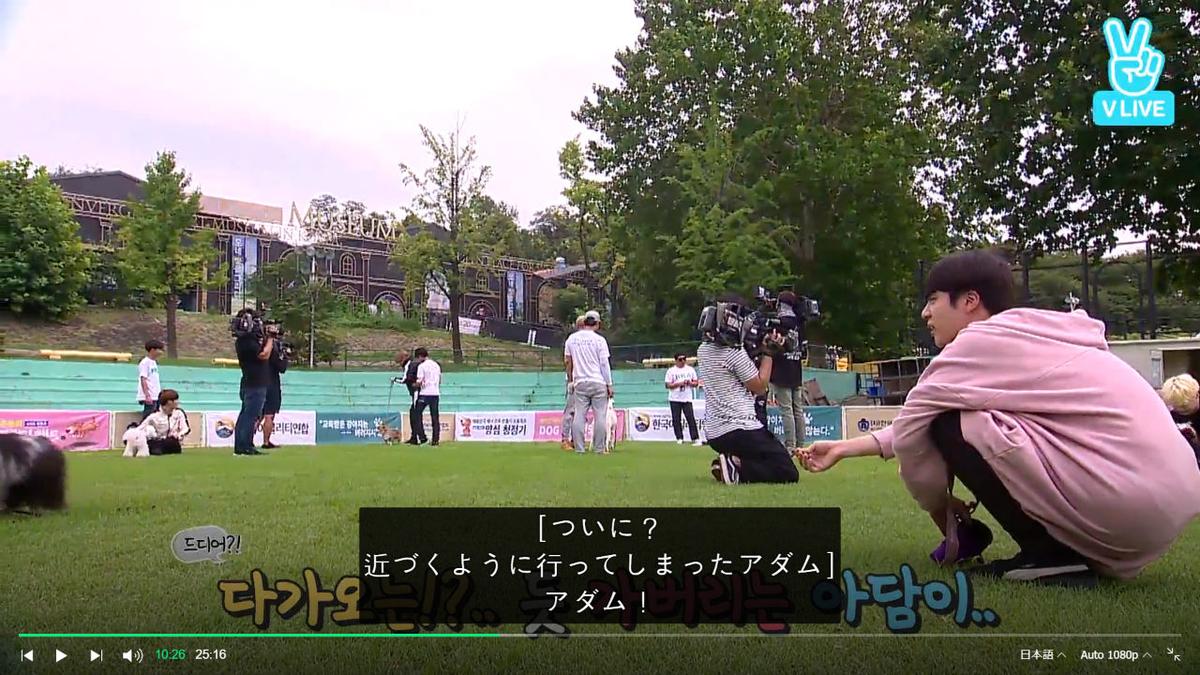 f:id:awawako:20210409111513j:plain