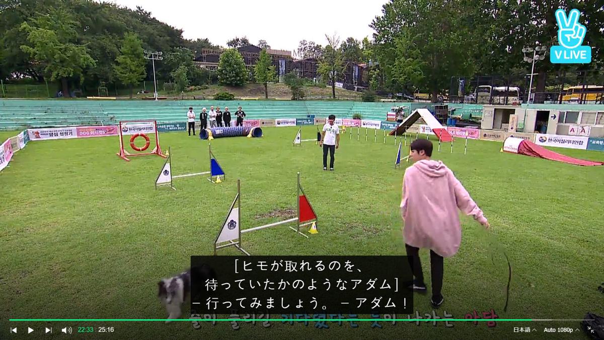 f:id:awawako:20210409130824j:plain