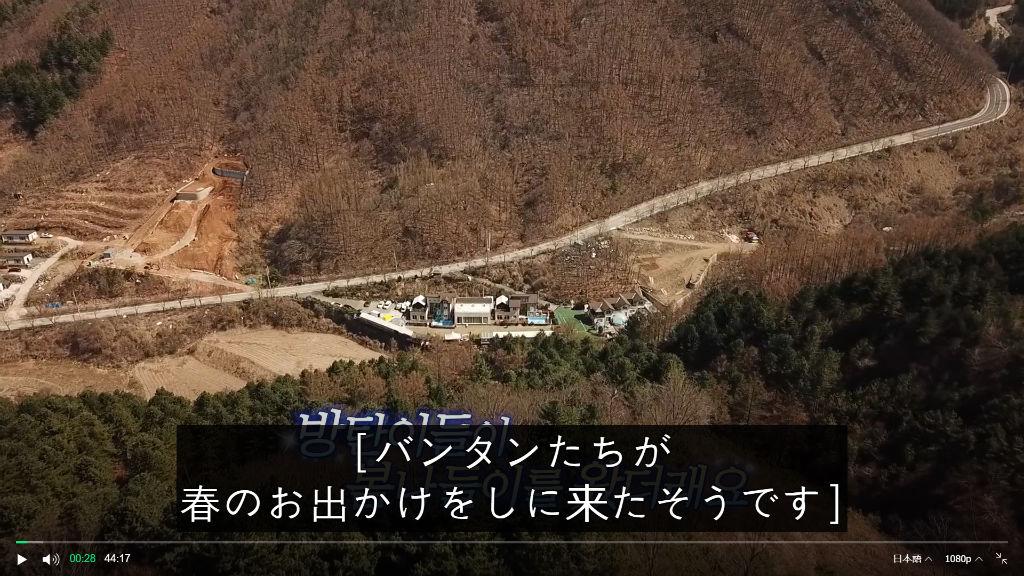 f:id:awawako:20210504221551j:plain