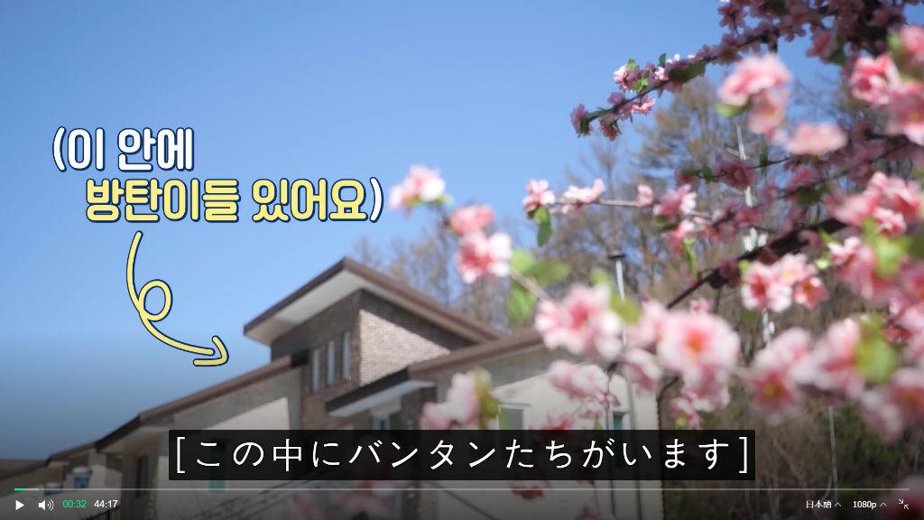 f:id:awawako:20210504221618j:plain