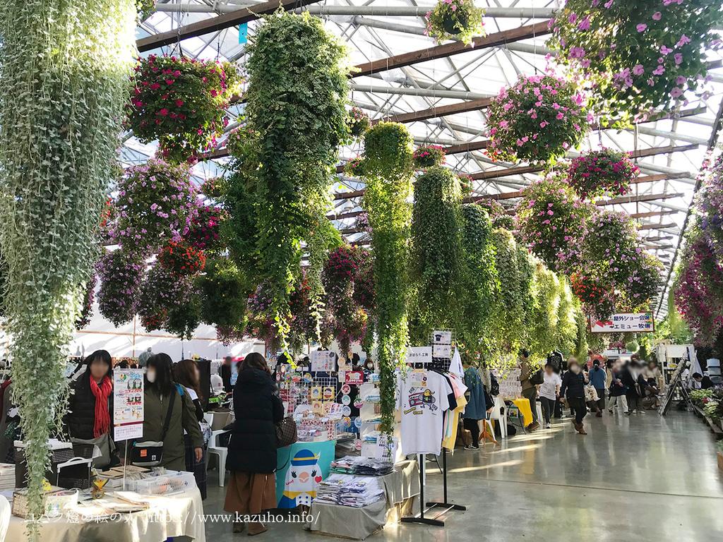 温室の天井からは色鮮やかな植物が吊るされている