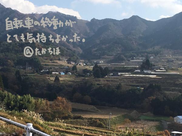 f:id:aya-haseko:20161222232208p:image