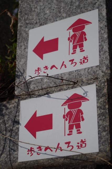 f:id:aya-haseko:20170628204501j:plain