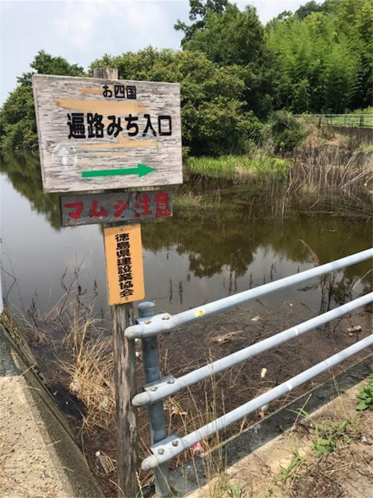 f:id:aya-haseko:20170813220046j:image
