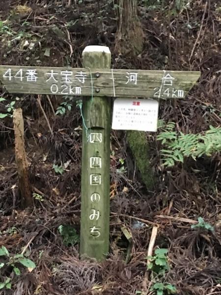 f:id:aya-haseko:20171114221839j:plain