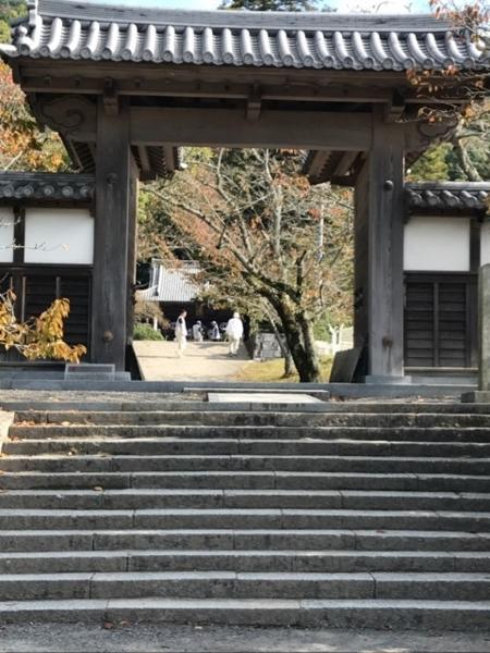 f:id:aya-haseko:20171118231427j:plain