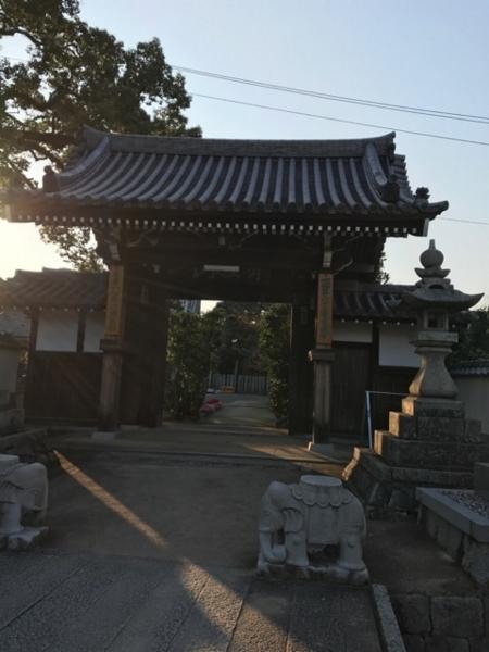 f:id:aya-haseko:20171124112842j:plain