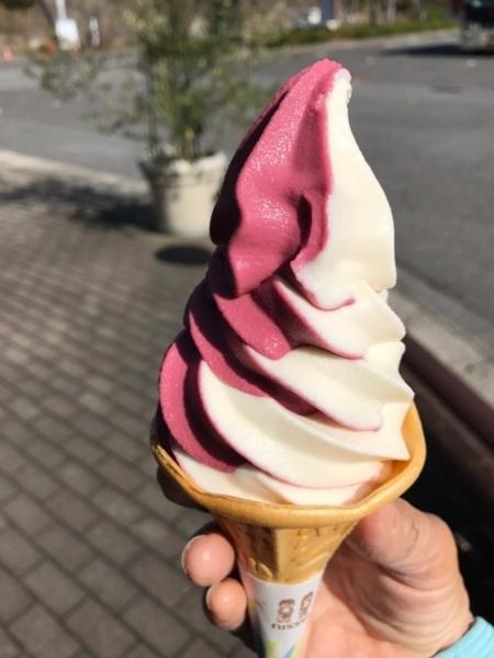 f:id:aya-haseko:20171202101759j:plain